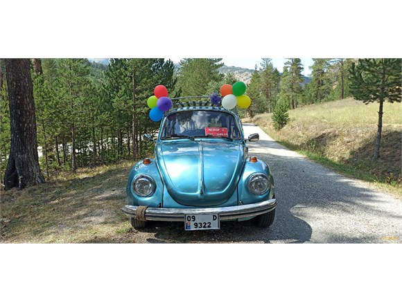 Sahibinden Volkswagen Diğer Modeller
